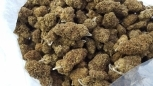 Licensed Organic Mendo Variety Pack 5  lbs (@$400/lb)