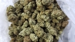 Licensed NO RESERVE Organic White Widow Sour Diesel 2  lbs (@$600+/lb)